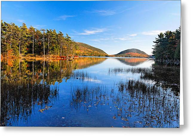 Mt Desert Island Greeting Cards - Sunny Autumn Day at Eagle Lake  Greeting Card by George Oze