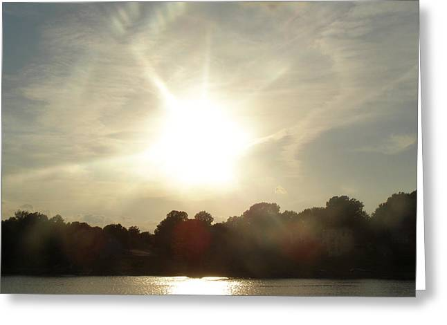 Sunny beams Greeting Card by Brityn Klehr