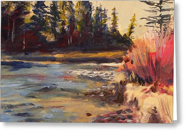 Little Red River Paintings Greeting Cards - Sunny Colorado wooded stream Greeting Card by Walt Maes