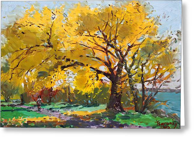 Fall Trees Greeting Cards - Sunny Sunday with Viola Greeting Card by Ylli Haruni