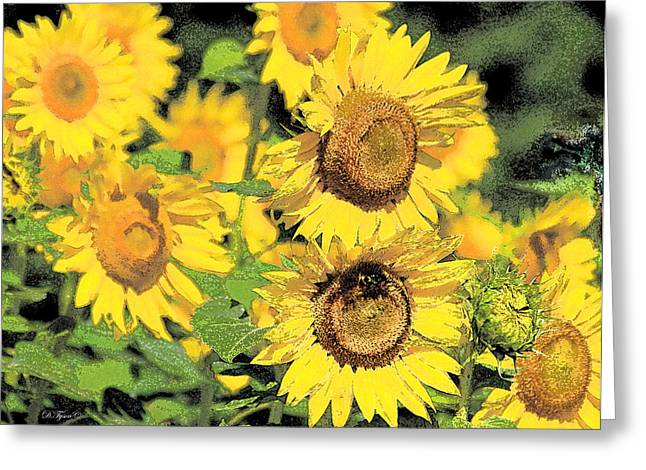 Fed Greeting Cards - Sunny Sunflowers Greeting Card by Diana  Tyson