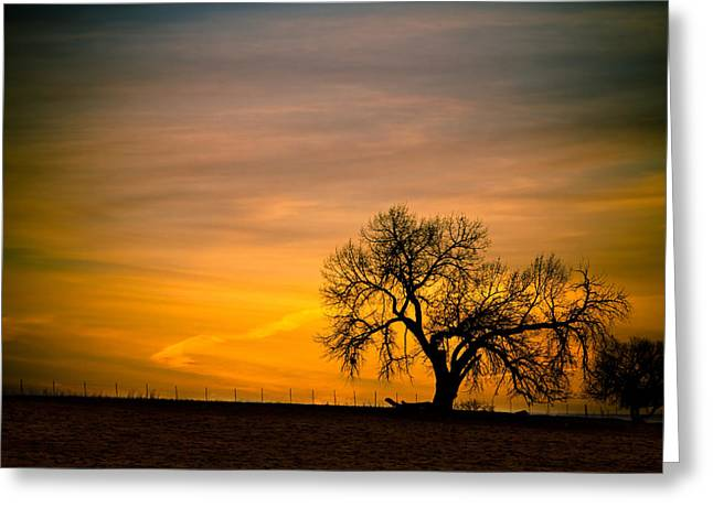 Sunset Canvas Art Greeting Cards - Sunrise 1-27-2011 Greeting Card by James BO  Insogna