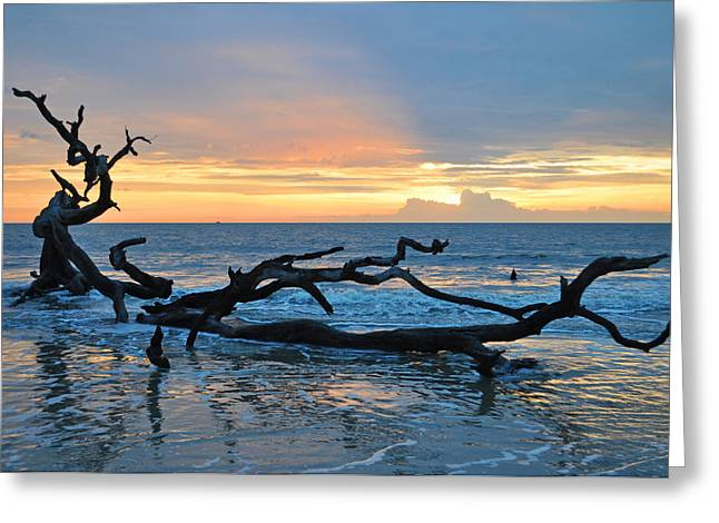 Driftwood Beach Greeting Cards - Sunrise at Driftwood Beach 1.4 Greeting Card by Bruce Gourley