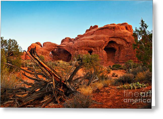 Grand Circle Greeting Cards - Sunrise at the Double Arches Greeting Card by Robert Bales