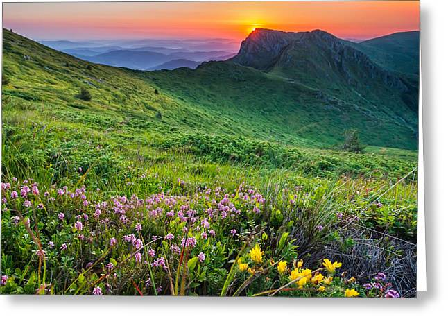 Reserve Greeting Cards - Sunrise behind Goat Wall Greeting Card by Evgeni Dinev