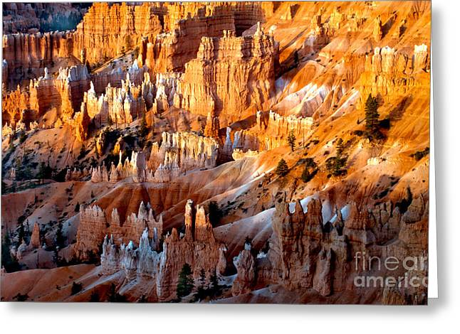 Grand Circle Greeting Cards - Sunrise Hoodoos Greeting Card by Robert Bales