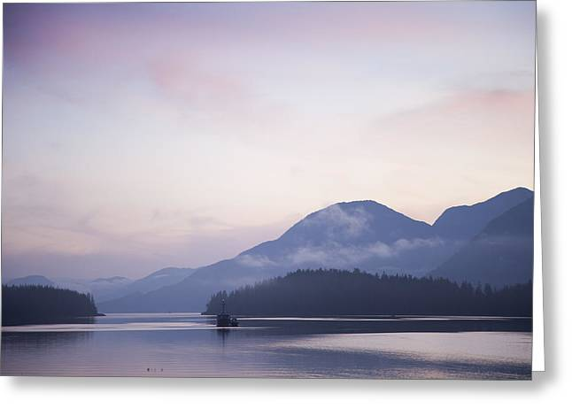 Sunrise In The Great Bear Rainforest Greeting Card by Taylor S. Kennedy