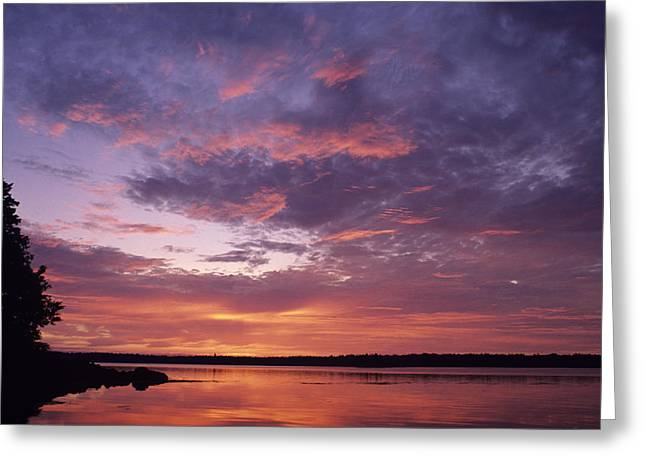 Maine Landscape Greeting Cards - Sunrise Lights Up The Sky Over Cobscook Greeting Card by Stephen Alvarez