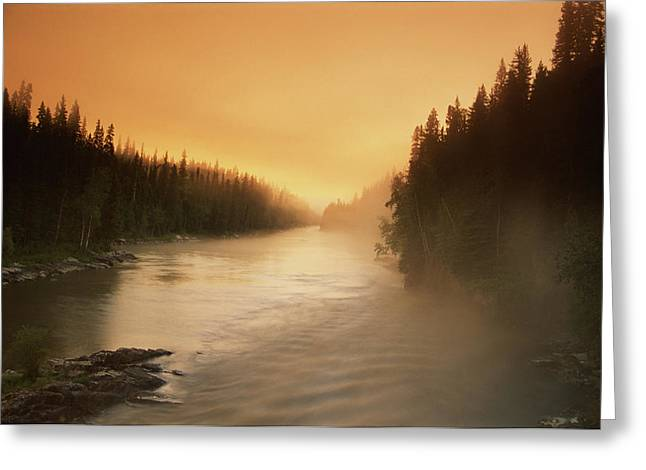 Foggy Day Greeting Cards - Sunrise, Morning Mist Over Grass River Greeting Card by Dave Reede