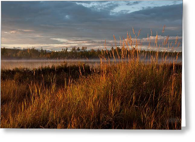 Wasilla Greeting Cards - Sunrise on Hourglass Lake Greeting Card by Melissa Wyatt