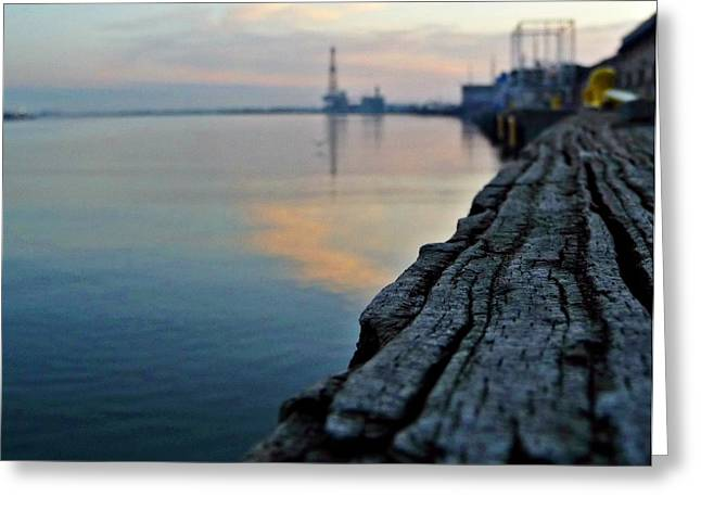 Sunrise On The Harbor Greeting Card by John Collins