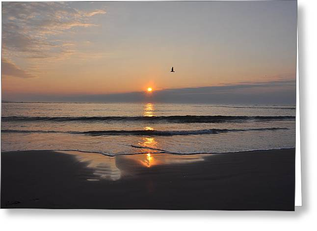Sunrise On Beach Greeting Cards - Sunrise on the Ocean Greeting Card by Bill Cannon