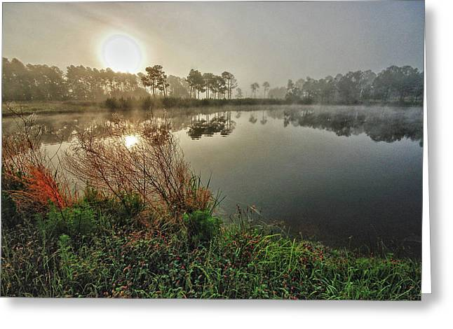 Crimson Tide Photographs Greeting Cards - Sunrise on the Pond Greeting Card by Michael Thomas