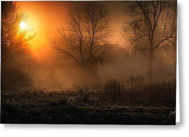 Sunrise on the projects Greeting Card by Everet Regal