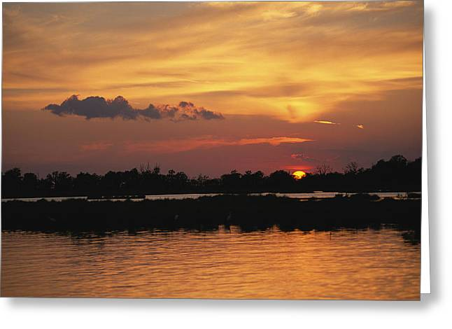Louisiana Sunrise Greeting Cards - Sunrise Over Delacroix Island Greeting Card by Medford Taylor
