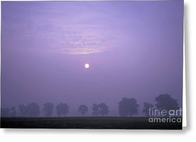 Field. Cloud Greeting Cards - Sunrise over Misty Southern Ontario Field Greeting Card by Gordon Wood