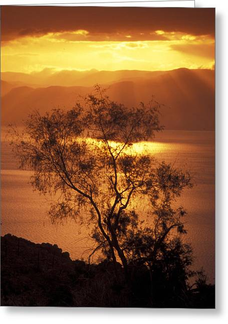 Dead Sea Greeting Cards - Sunrise Over Mount Nebo In Jordan Greeting Card by Richard Nowitz