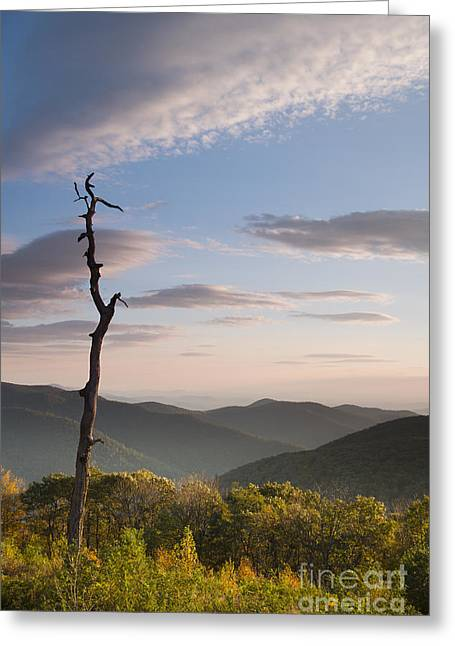 Shenandoah National Park Greeting Cards - Sunrise over Shenandoah National Park  Greeting Card by Dustin K Ryan