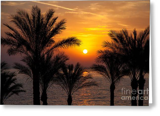 Warm Summer Greeting Cards - Sunrise over the Red Sea Greeting Card by Jane Rix
