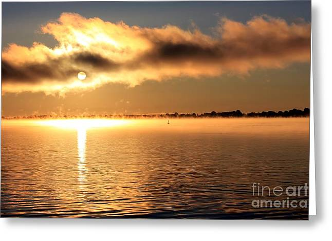 Cold Morning Sun Greeting Cards - Sunrise over the river Greeting Card by Sophie Vigneault