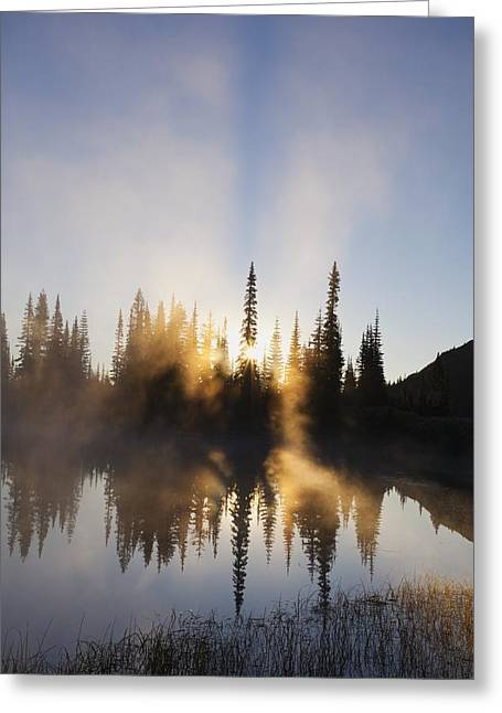 Sun Beams Sun Rays Greeting Cards - Sunrise Reflected In Reflection Lake In Greeting Card by Craig Tuttle