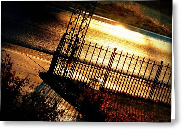 Raw Sienna Greeting Cards - Sunrise Street Reflections Greeting Card by Cindy Wright