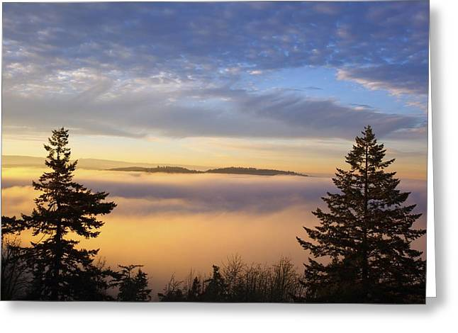 United States Of America Hazy Day Greeting Cards - Sunrise Through Morning Fog Willamette Greeting Card by Craig Tuttle
