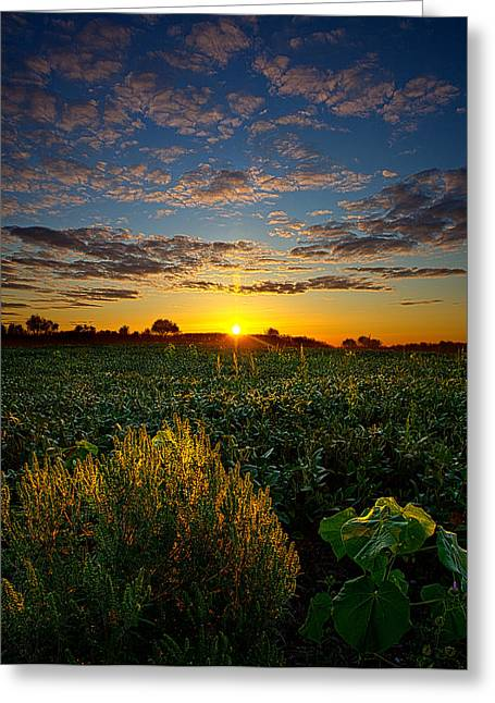 Geographic Greeting Cards - Suns Rise Greeting Card by Phil Koch