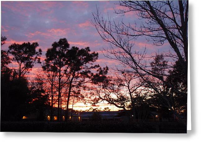 Sunset 7 Greeting Card by Michael Milanak