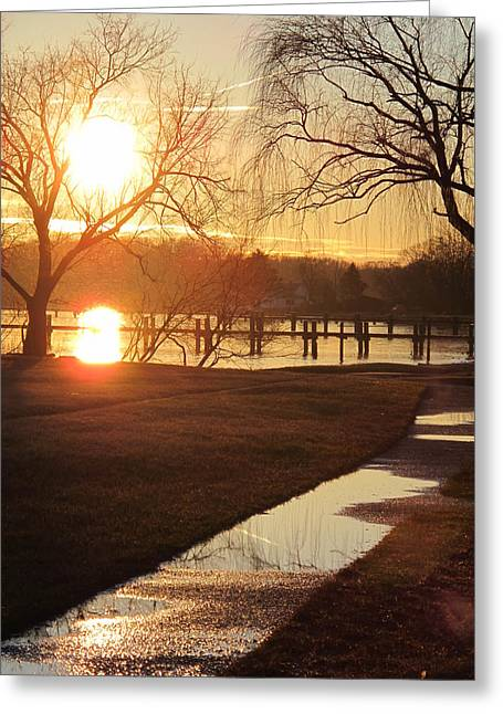 The Trees Pyrography Greeting Cards - Sunset After The Rain Greeting Card by Valia Bradshaw