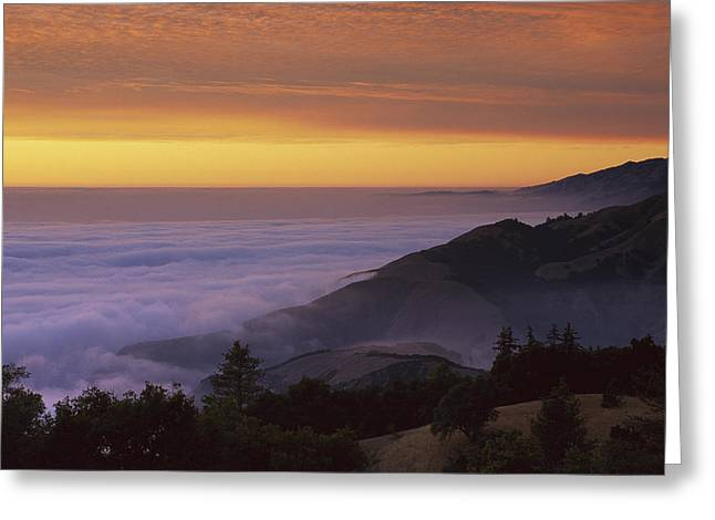 Big Sur California Greeting Cards - Sunset At Gamboa Point Big Creek Greeting Card by Suzi Eszterhas