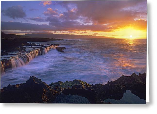 Sharks Cove Greeting Cards - Sunset At Sharks Cove Oahu Hawaii Greeting Card by Tim Fitzharris