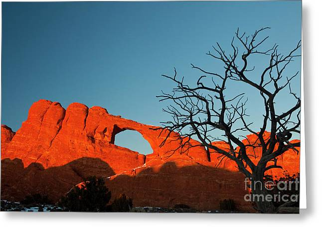 Southwest Greeting Cards - Sunset at Skyline Arch Greeting Card by Keith Kapple