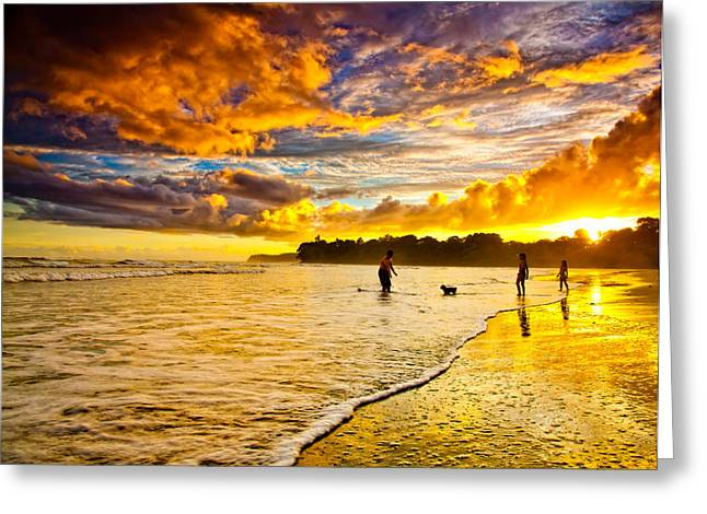 At The Beach Greeting Cards - Sunset at the Coast Greeting Card by Iris Greenwell