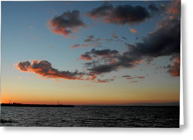 Sunset Greeting Cards Greeting Cards - Sunset Bay 20 Greeting Card by Joyce StJames