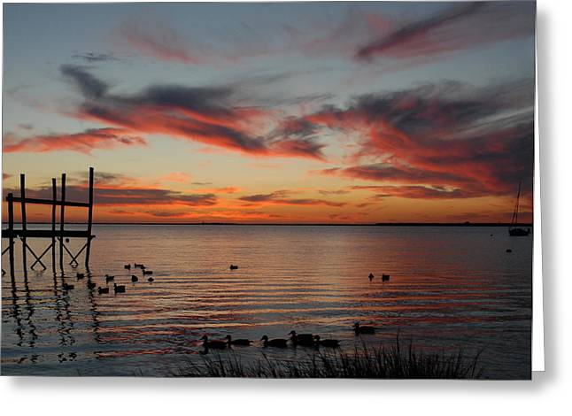 Sunset Greeting Cards Greeting Cards - Sunset Bay 58 Greeting Card by Joyce StJames