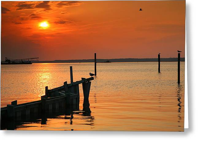 Sunset Prints Greeting Cards - Sunset Bay V Greeting Card by Steven Ainsworth