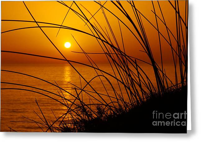Backdrop Greeting Cards - Sunset Greeting Card by Carlos Caetano