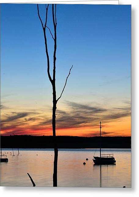 Manasquan Reservoir Greeting Cards - Sunset Greeting Card by Ekaterina LaBranche