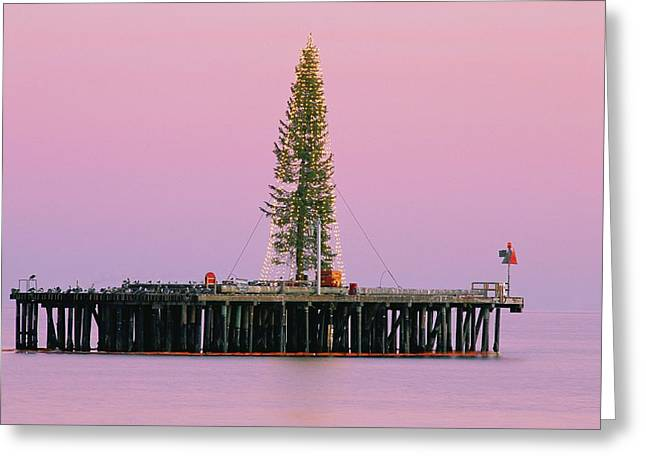 Stearns Wharf Greeting Cards - Sunset Framing A Christmas Tree Greeting Card by Rich Reid