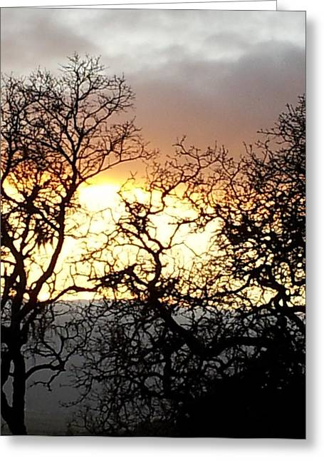 Marin County Greeting Cards - Sunset from Novato 2 Greeting Card by Nimmi Solomon