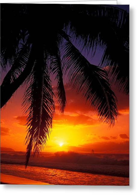 Vince Greeting Cards - Sunset From The Beach Greeting Card by Vince Cavataio - Printscapes