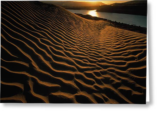 Ripples In The Sand Greeting Cards - Sunset Illuminates The Sand Dunes East Greeting Card by Jim Richardson