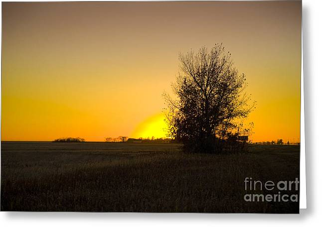 Highway Pyrography Greeting Cards - Sunset in Saskatchwan Greeting Card by Neil Speers