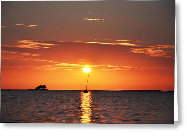 Dunedin Greeting Cards - Sunset in the Tropics Greeting Card by Bill Cannon