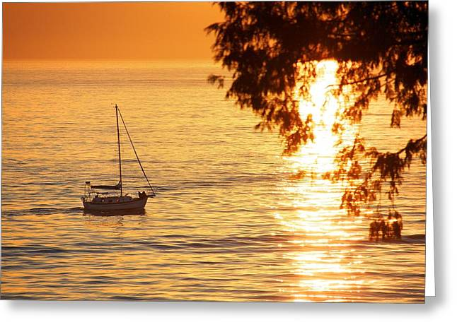 Canon 50d Greeting Cards - Sunset Greeting Card by Julius Reque