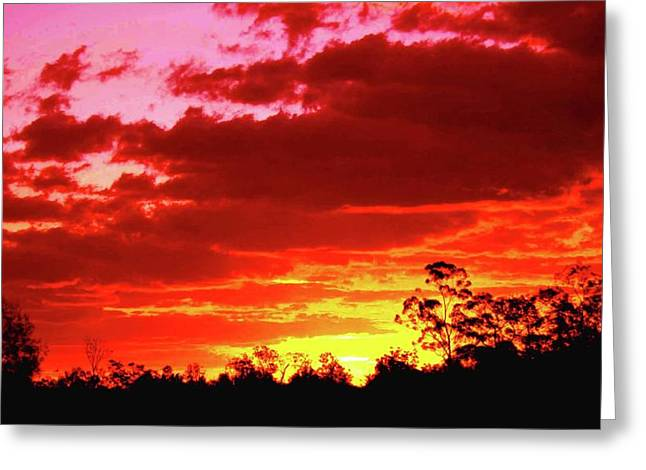 Most Popular Photographs Greeting Cards - Sunset Greeting Card by Karen Elzinga