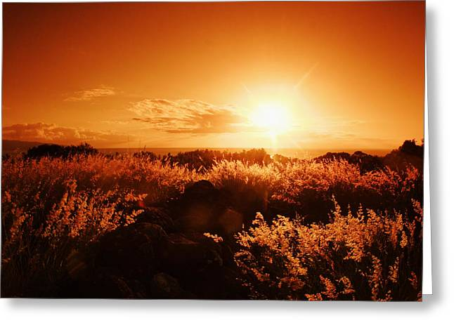 Vince Greeting Cards - Sunset Landscape Greeting Card by Vince Cavataio - Printscapes
