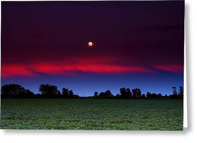 Nature Center Greeting Cards - Sunset Moon Greeting Card by Cale Best