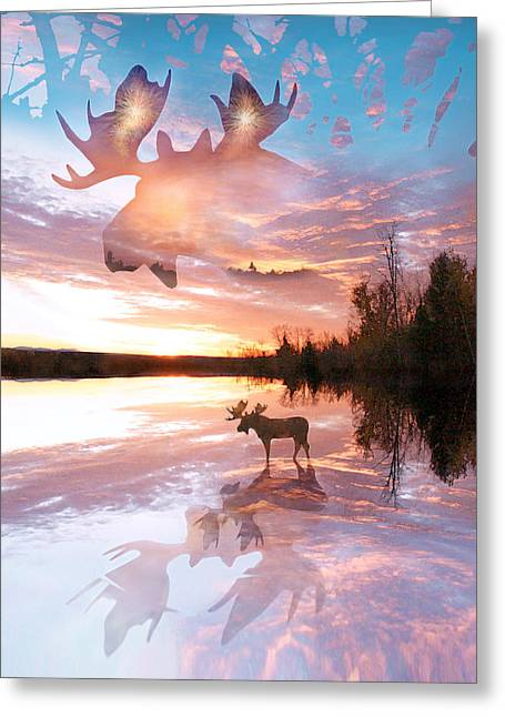 Reflections Digital Art Greeting Cards - Sunset On Moose Pond Greeting Card by John Stephens